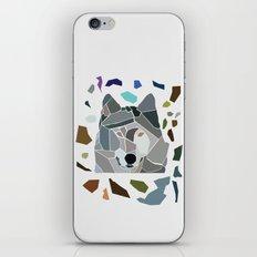 Dreamer Dulcet iPhone & iPod Skin