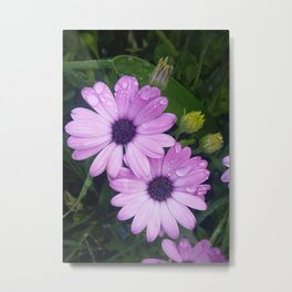 Purple Flowers on a Rainy Day Metal Print