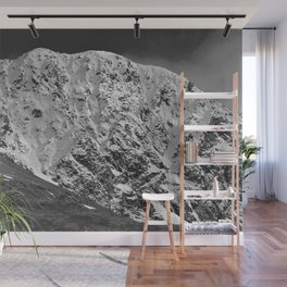 Fresh Snow in Portage Valley, Alaska - B & W Wall Mural