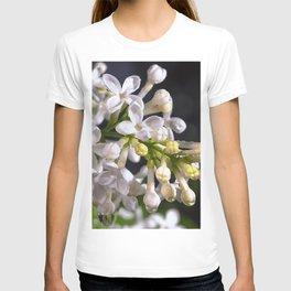 Raindrops on white lilacs T-shirt