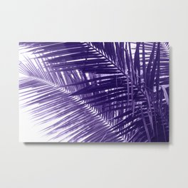 Violet Coco Palm Leaf. Tropical Nature Photo Poster Metal Print