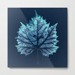 vine leaf autumn Metal Print