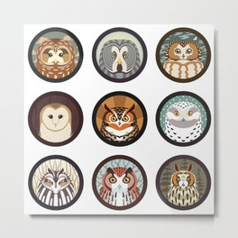 Owls of the Eastern United States Metal Print