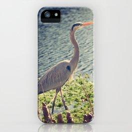 Erin, Erin, the big Blue Heron iPhone Case