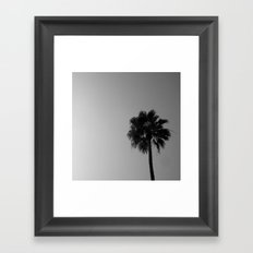 Palm Tree, 2 Framed Art Print