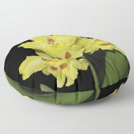 Glorious Golden Orchid - Odontonia Yellow Parade Alpine Floor Pillow