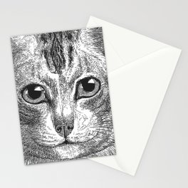 Black & White - Kitty Cat Close Up Stationery Cards