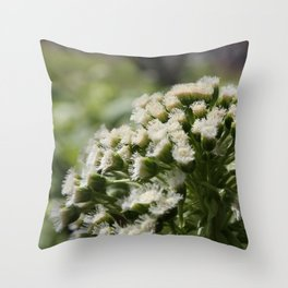 Spunk Throw Pillow