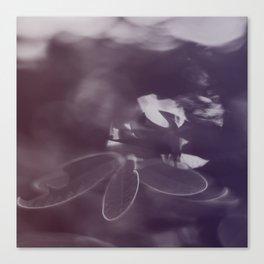 Janet's Mantle #1 Canvas Print