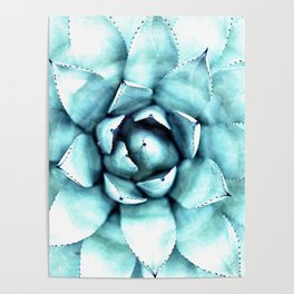 Succulent - A Watercolour Mandala Poster