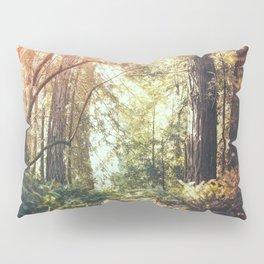 Beautiful California Redwoods Pillow Sham