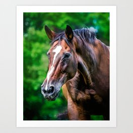 A Horse's Gaze Can Pierce My Soul Art Print