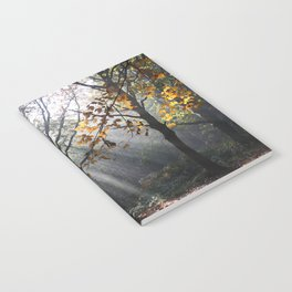 Autumn Sunbeams Notebook