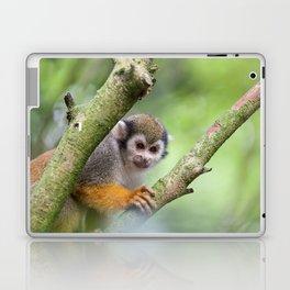 Squirrel monkey Laptop & iPad Skin