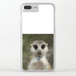 Standing meerkat Clear iPhone Case