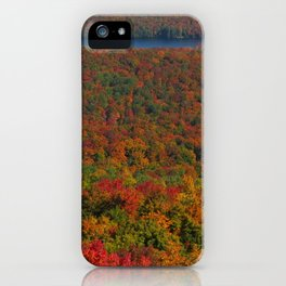 Bright fall colors iPhone Case