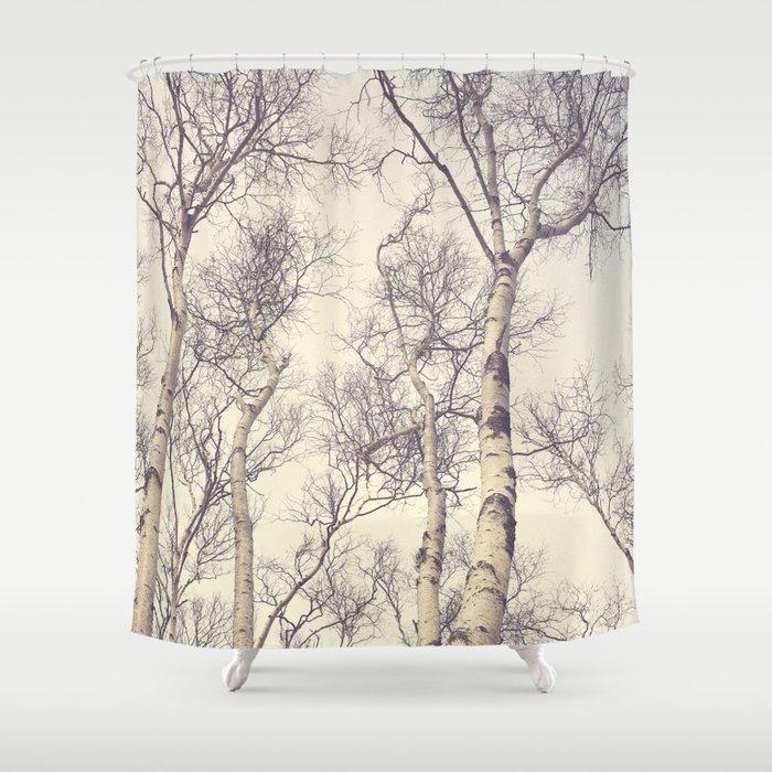 Winter Birch Trees Shower Curtain