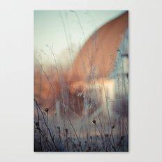 Grains and Grass. Canvas Print