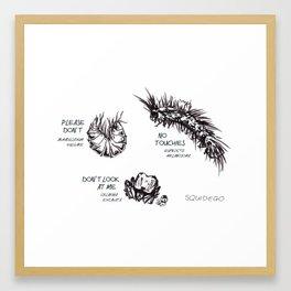 Asocial Arthropods Framed Art Print