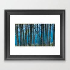 Bamboo On River Framed Art Print