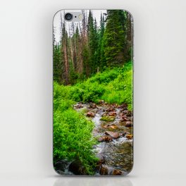 Wasatch Mountains Forest Creek Print iPhone Skin