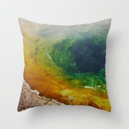 Morning Glory Pool Throw Pillow