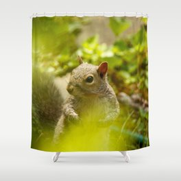 Squirrel! Shower Curtain