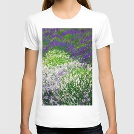 White Blossoms in Fields of Lavender floral landscape painting by Mojnovi T-shirt
