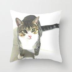 Miojo Cat. Throw Pillow