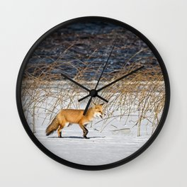 Red Tail Fox on Fish Hook Lake Wall Clock