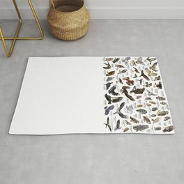 Birds of Prey of the United States Rug