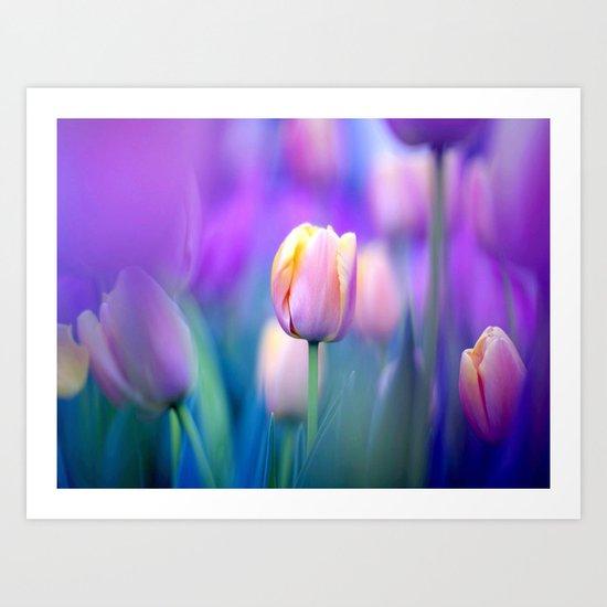 Tulips , Flowers  , Tulips , Flowers  games, Tulips , Flowers  blanket, Tulips ,  Art Print