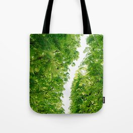 Tuileries Garden IV Tote Bag
