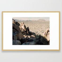 Joshua Tree, as Seen from Above Framed Art Print