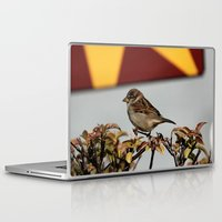 sparrow Laptop & iPad Skins featuring Sparrow by IowaShots