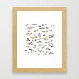 fish named Framed Art Print