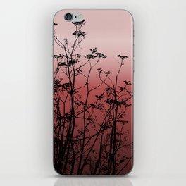 Fennel iPhone Skin