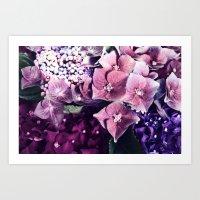 hydrangea Art Prints featuring Hydrangea  by Truly Juel