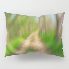 Spinning Sycamore Trail Pillow Sham