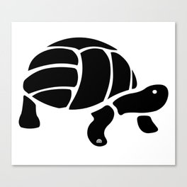 Volley Turtle Canvas Print