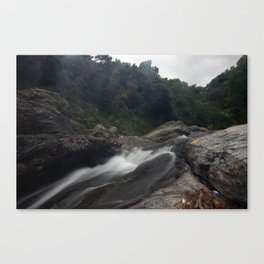 River #3 Canvas Print