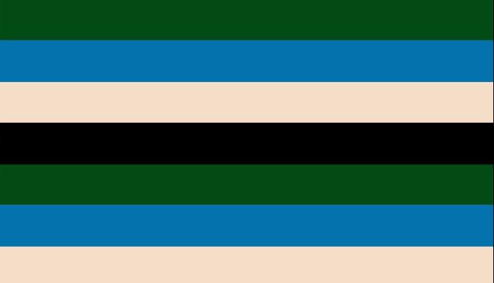 Color Stripe _003 Pillow Sham