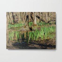 Swampy growth Metal Print