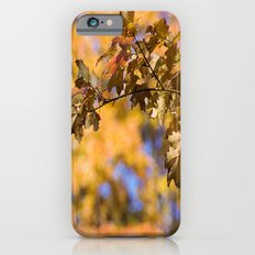 Orange Backdrop iPhone 6s Slim Case