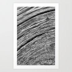 Natural Woodgrain Texture Art Print