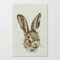 hare Canvas Prints featuring Hare by Hannah Isabelle Lewis
