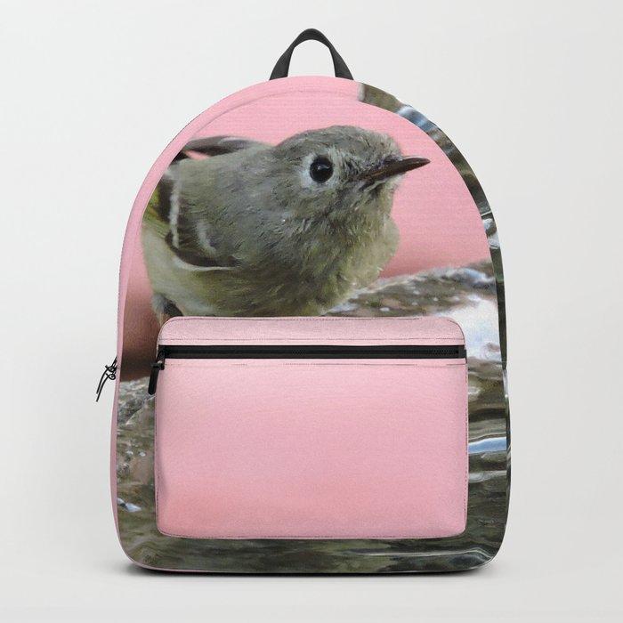 Kinglet at the Basin Rim Backpack