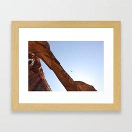 Desert Eagle Framed Art Print
