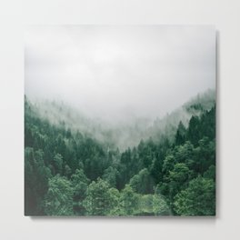 foggy forest landscape Metal Print