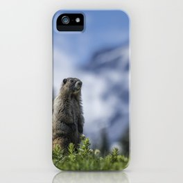 Marmot Checking Out His Neighborhood at Mount Rainier, No. 3 iPhone Case